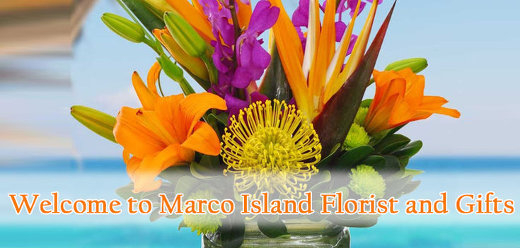 Welcome to Marco Island Florist and Gifts. You one stop shopping website.