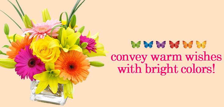 Get Well - Brighten up their day in a special way.