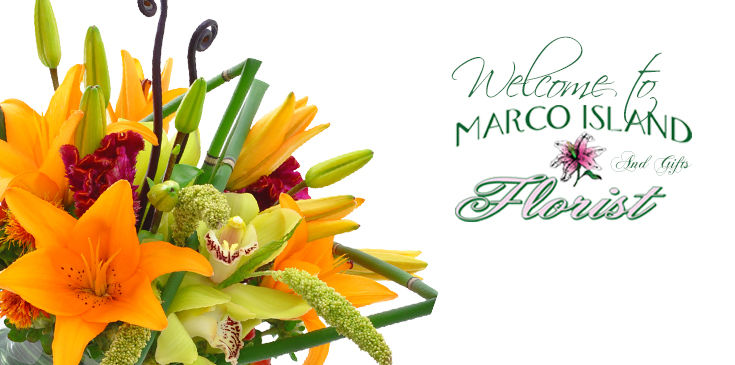 Welcome to Marco Island Florist 's online showroom. Where you receive points with every online purchase!