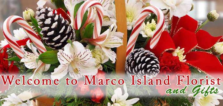 Welcome to Marco Island Florist online showroom where you receive point with every online purchase!